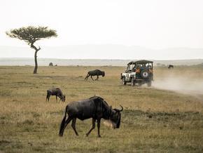 Circuits Privatifs Tanzanie