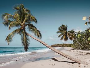 Séjours Plage Guadeloupe