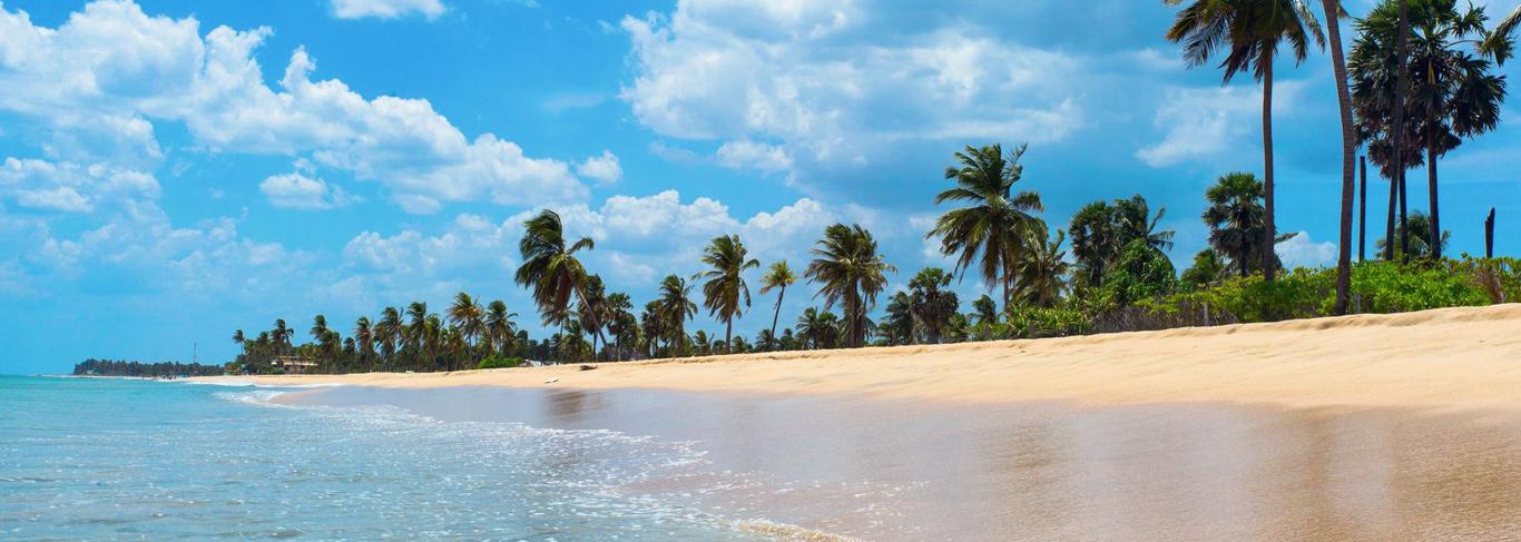 Voyage à Trincomalee au Sri Lanka