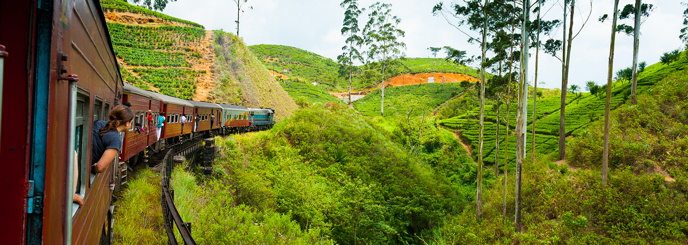 Voyage sur-mesure au Sri Lanka
