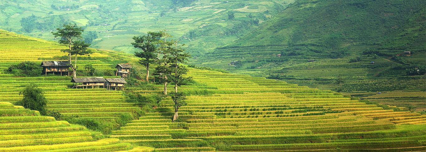 Voyages d'exception au coeur du Vietnam