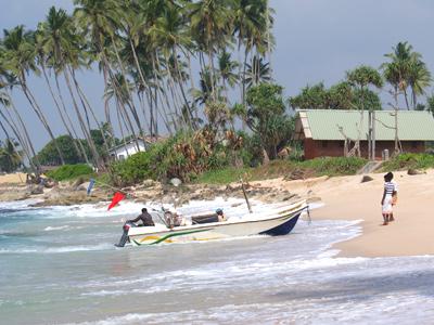 Arrivée d'un pêcheur sur une plage à Galle au Sri Lanka