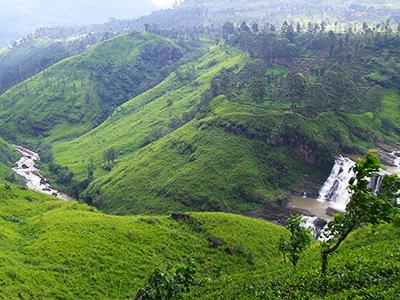Voyage à Nuwara Eliya