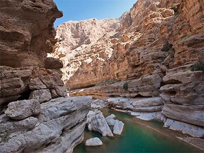 Dromadaire - OT Oman