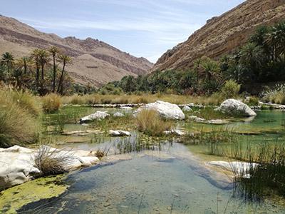 Dakhiliyah au Sultanat d'Oman