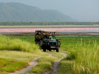 Safari au Lac Manyara en Tanzanie