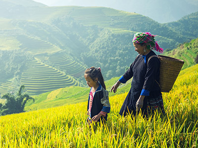 Circuit au Vietnam | © josef muellek