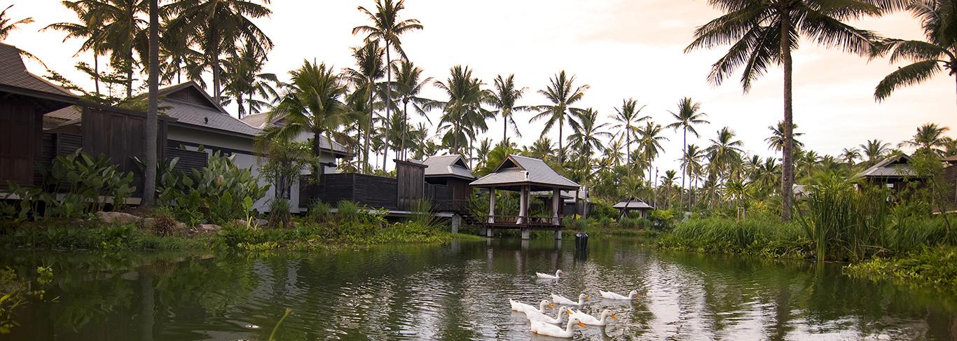 Les jardins et lagons de l'Anantara Mai Khao en Thaïlande