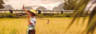 Eastern & Oriental Express Belmond