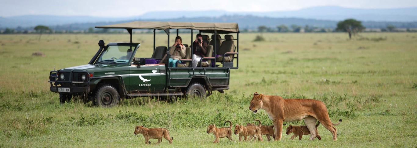 Safari en Tanzanie savane