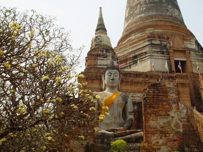 Découverte de Ayutthaya