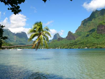 Baie de Cook (Evil Monkey / Wikimedia Commons)