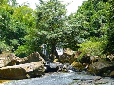 Cascade Khlong Chao