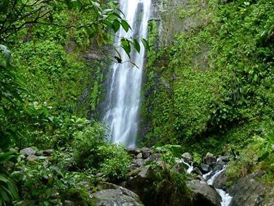 Chutes de la Rivière Moreau (Découvrir la Guadeloupe / Facebook)