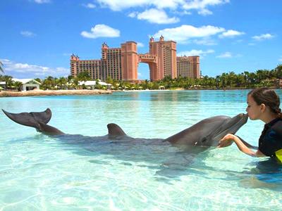 Dolphin Cay (Atlantis Resort / Facebook)