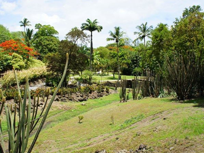 Habitation Latouche (Zoo de Martinique / Facebook)