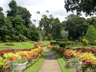 Jardin Peradeniya