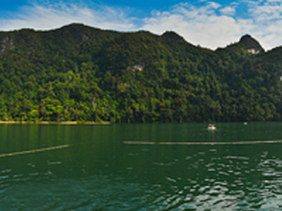 Lac Dayang Bunting (Muse Rosli / Flickr)