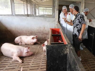 Lycée-agricole-d'Opunohu-tahiti-news
