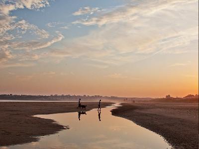 Meia Praia-plage-flickr-ibo.h