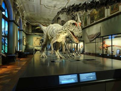 Musée d'Histoire naturelle (vienna.info / Facebook)