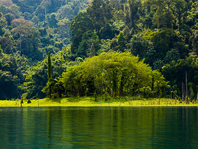Parc National de Khao Sok (Khao Sok rainforest - Finnur Malmquist/flickr)