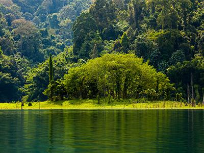 Parc National de Khao Sok (Khao Sok rainforest - Finnur Malmquist/flickr)