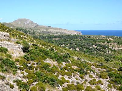 Parc naturel de la presqu'île du Llevant (Olaf Tausch / Wikimedia Commons)