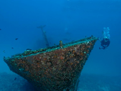 Silver Star (Just Diving Mauritius - Olivier Fayolle / Facebook)