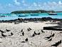 Parc Marin de Blue Bay (Blue Bay Mauritius / Facebook)