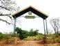 Parc National du Lac Manyara (lecucurbitacee / Flickr)
