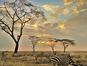 Parc National du Serengeti (Mike / Flickr)