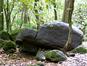 Site archéologique de Hatiheu (Pierre OTTINO - Service de la Culture et du Patrimoine / Site web)
