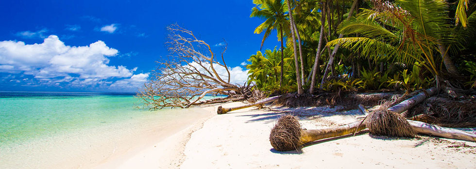 Pêche à la mouche aux Seychelles : Alphonse Island