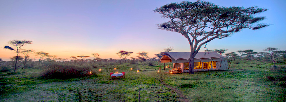 Séjour au andBeyond Serengeti Under Canvas