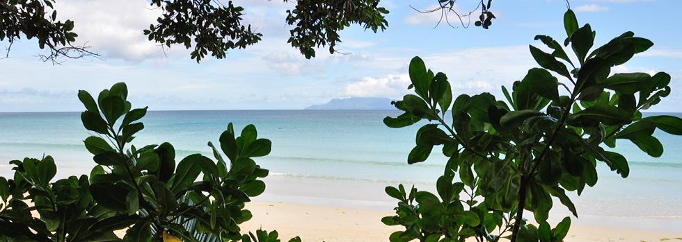 Séjour aux Seychelles : Augerine Hôtel