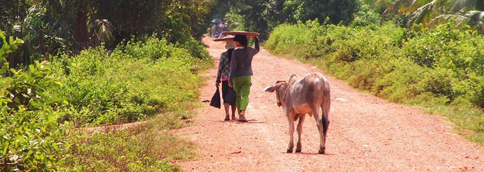 Battambang au Cambodge