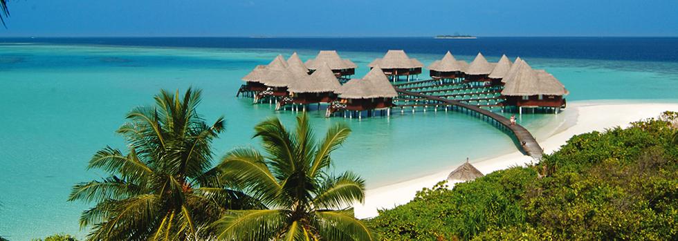 Coco Palm Dhuni Kolhu Resort & Spa un hôtel de rêve