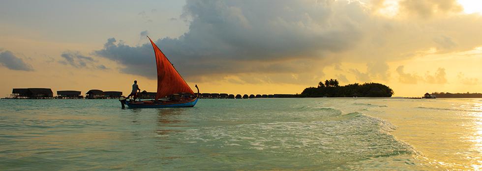 Hôtel de luxe aux maldives, découvrez le Cocoa Island by COMO
