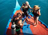 Plongée aux Maldives avec le LUX* South Ari Toll