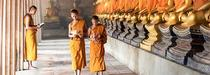 Culture et nature au Laos