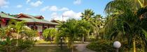 Voyage aux Seychelles : Fleur de Lys