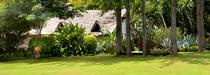 The Plantation Lodge en Tanzanie