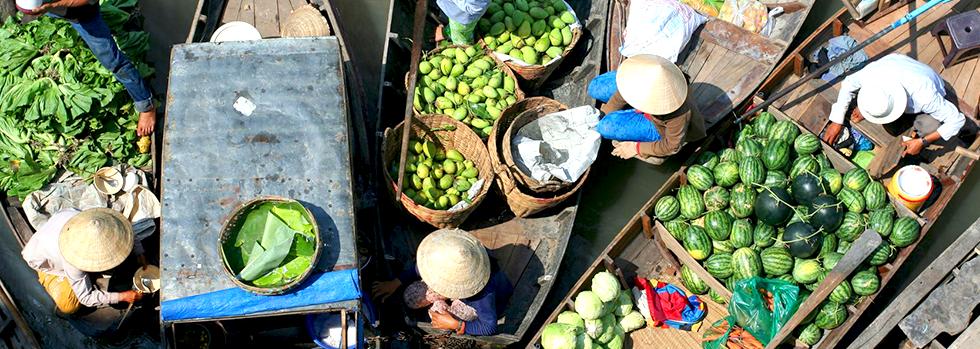 Circuit L'Essentiel du Vietnam