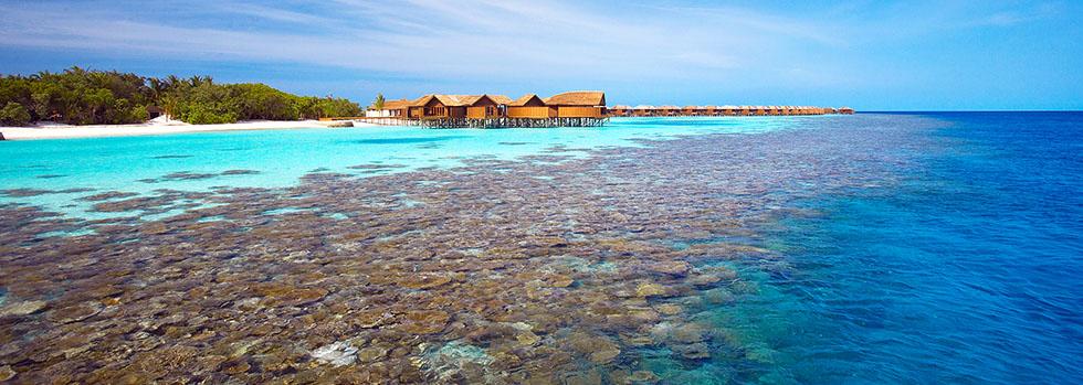 Lily Beach Resort avec votre spécialiste