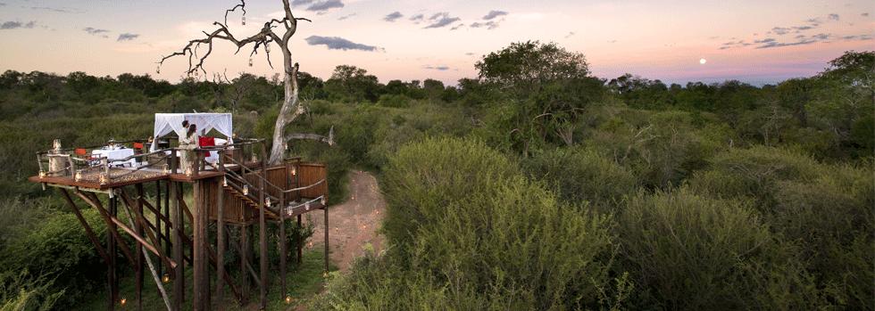 Lion Sands Game Reserve
