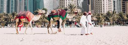 localisation-le-meilleur-des-emirats.jpg