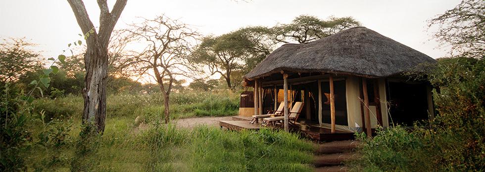 Séjour au Oliver's Camp en Tanzanie