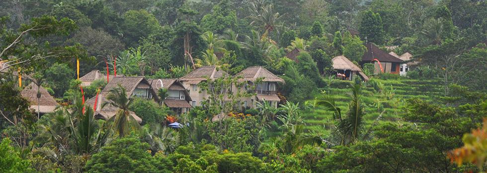 Vue du Surya Shanti Villa