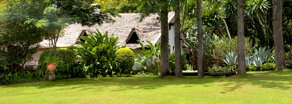 Séjour à The Plantation Lodge en Tanzanie